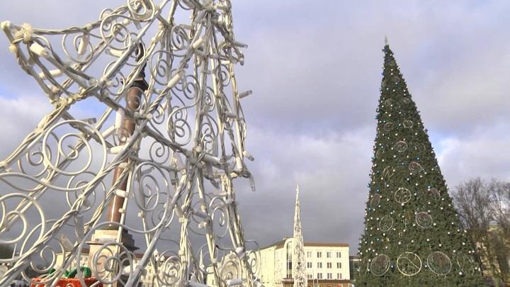 К следующему Новому году в Калининграде могут установить живую ель