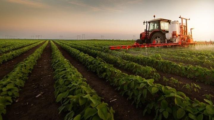 Экспорт сельхозпродукции Ставрополья с начала года составил 10 млн долларов
