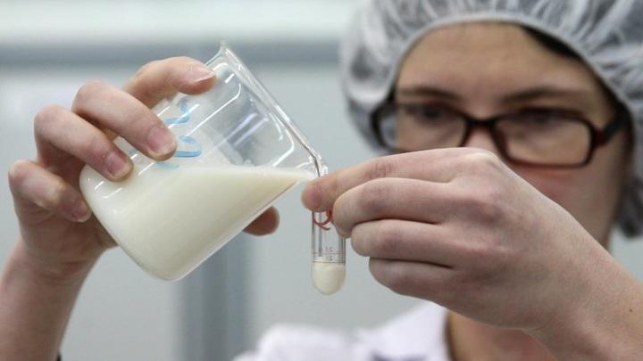 В Тамбовской области обнаружено молоко с антибиотиками