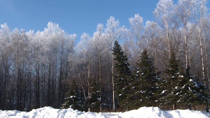 А снег идет. Очередные погодные перемены парализовали движение в Смоленске