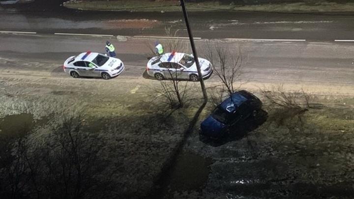 В Воронеже кусты помешали пьяному автомобилисту сбежать от полицейских