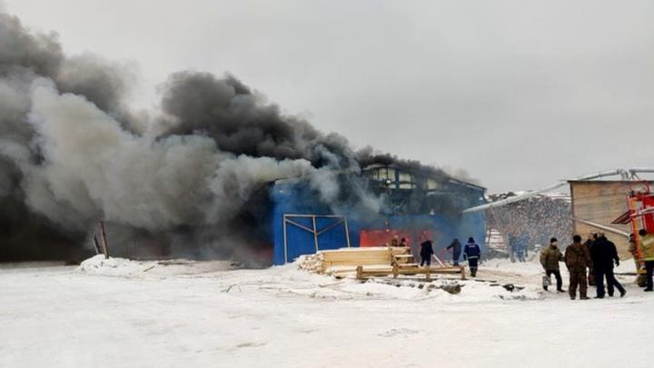 ВАрхангельской области сгорел склад древесины