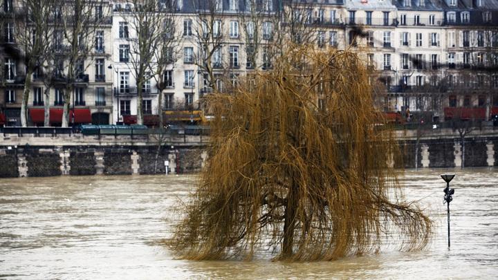 Вода в Сене сильно поднялась, в Париже закрыли ряд набережных