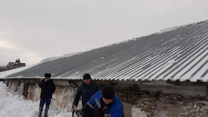 ГУ МЧС по Алтайскому краю