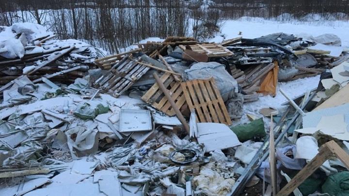На свалке близ Магнитогорска нашли отрезанную голову