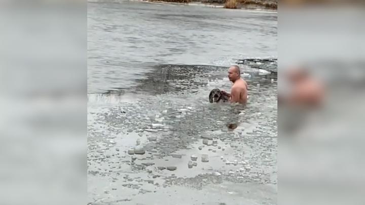"""""""Ледокол пришел"""": тонущую собаку спас """"морж"""". Видео"""