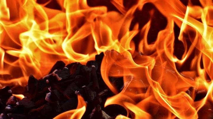Пожар в Новой Москве потушен