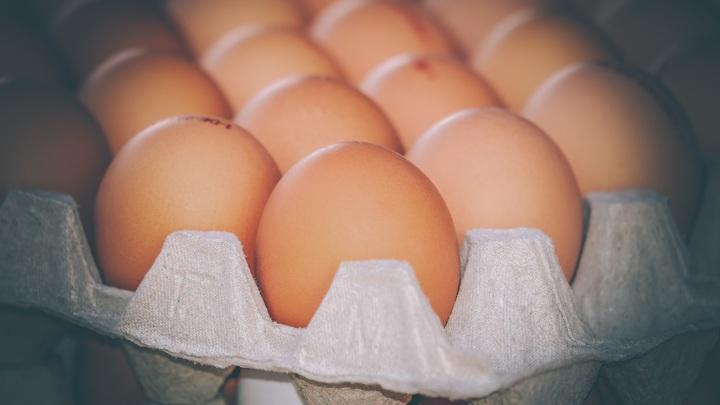 ФАС приступила к проверке производителей мяса курицы и яиц