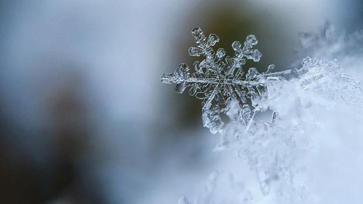 Начало марта будет аномально холодным на большей части азиатской территории России