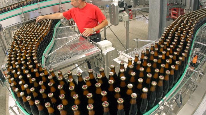 Немецкие пивовары потеряли миллионы, многим грозит банкротство