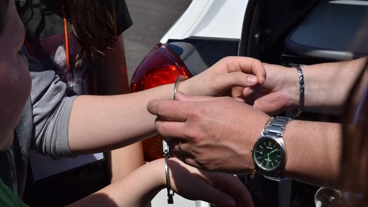 В Домодедове задержали подозреваемого в продаже чая с марихуаной