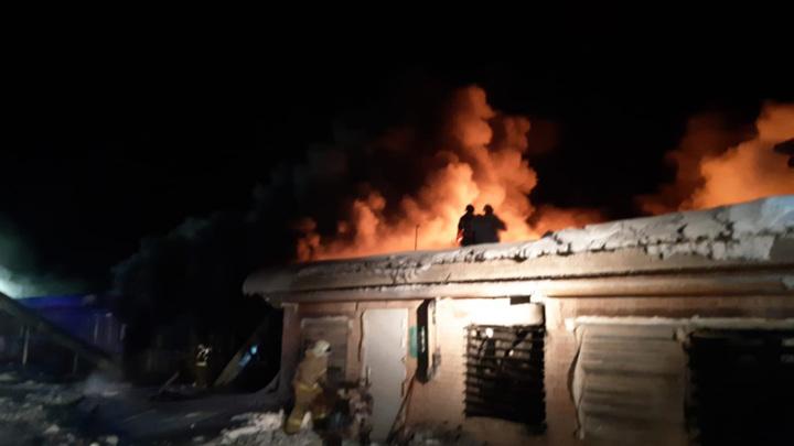 Больше 40 тысяч кур погибло при пожаре на птицефабрике в Татарстане