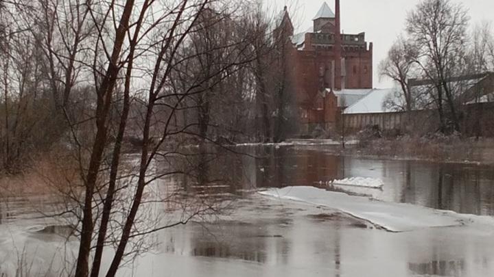 В Калининградской области зафиксировано повышение уровня воды в реках