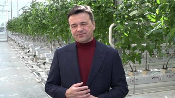 Губернатор Подмосковья рассказал, как праздновать Масленицу и 8 Марта
