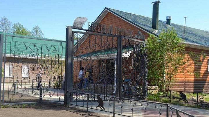 Бобровый городок Воронежского заповедника вошел в топ достопримечательностей России