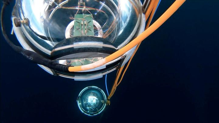 """В России будут следить за """"космическим планктоном"""""""