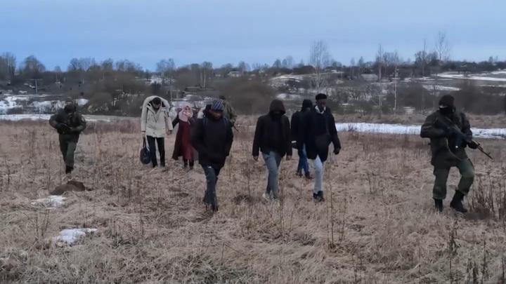 Пограничники задержали африканцев, пробирающихся в Россию из Белоруссии
