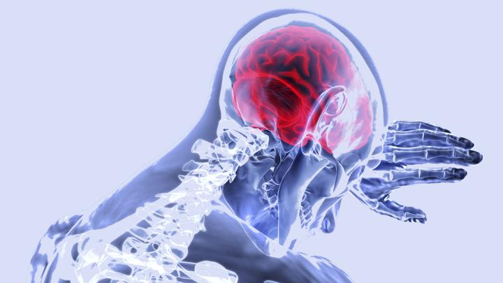 Некоторые процессы в мозге не завершаются даже после его смерти.