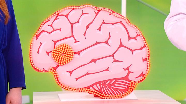 """Кадр из программы """"О самом главном"""".  Эпилепсия: факторы риска и меры профилактики"""