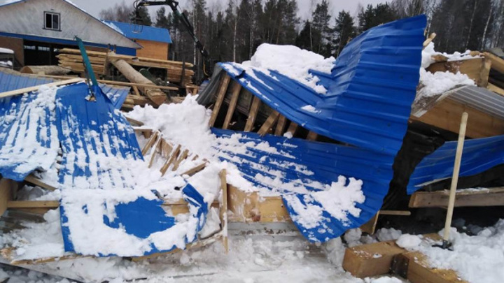 Работницу костромской лесопилки придавило упавшей крышей