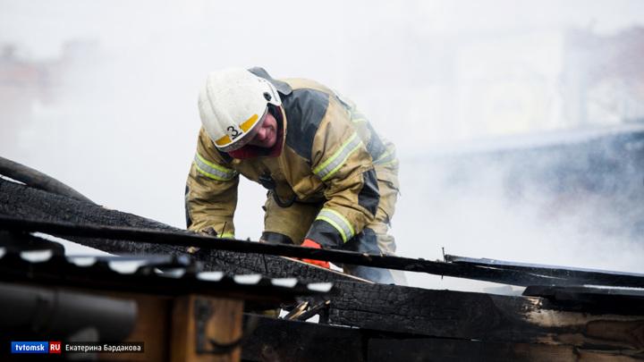 Около 60 животных и птиц погибли при пожаре в томском селе