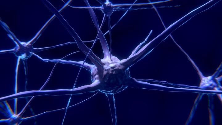 Искусственные нейроны делают робота способным на почти человеческие реакции.