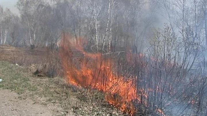 Пенсионерка заживо сгорела во время пала травы на своем участке