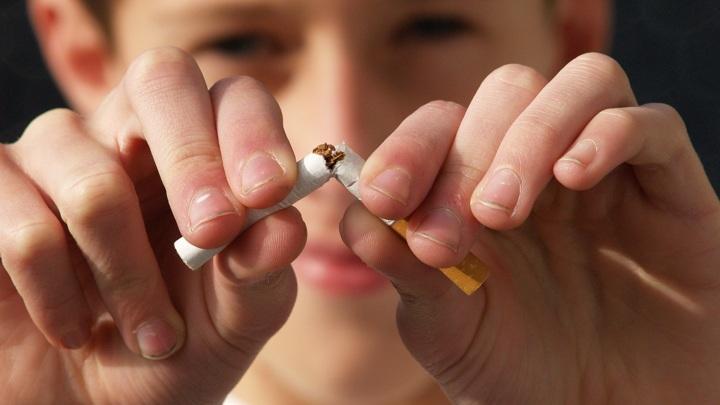 Больше тысячи пачек сигарет уничтожили в Марий Эл