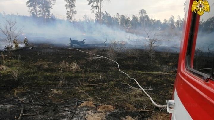 Названа возможная причина пожара на дачах в Самарской области