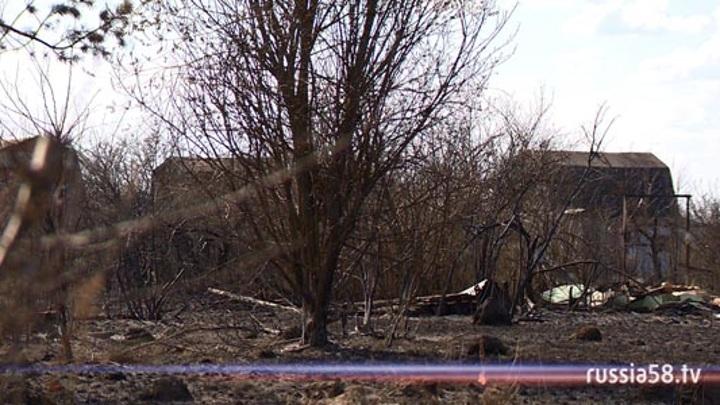 Пожар охватил несколько десятков дач в Пензенской области