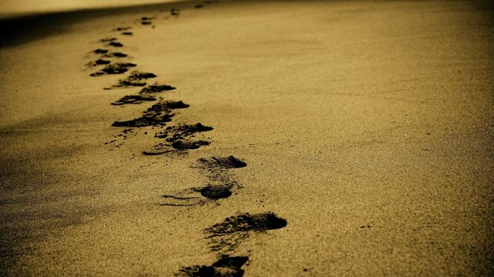 В Саратовской области появится первый инклюзивный пляж