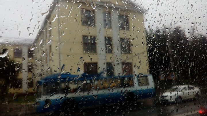 Южный циклон принесет в Ивановскую область дожди и похолодание