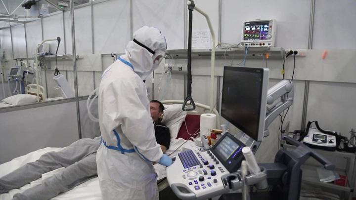 Власти Петербурга разворачивают дополнительные койки для пациентов с ковидом