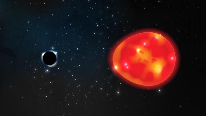 Гравитация чёрной дыры растягивает звезду, меняя её форму.