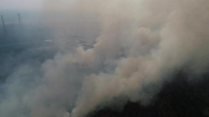 25 тысяч гектаров природных пожаров тушат в России