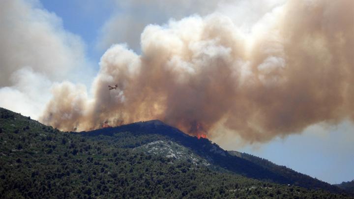 Дым от лесных пожаров распространяется на многие километры и содержит высокие концентрации ядовитых веществ.