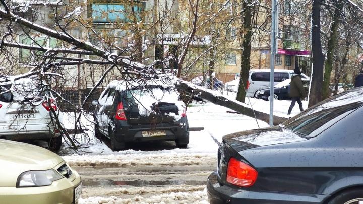 Апрельский снегопад нарушил энергоснабжение в Тульской области