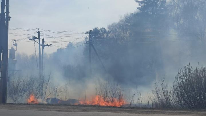 В Юргинском районе действует один лесной пожар возле села Новый Тап