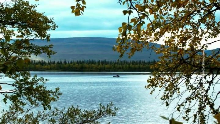 Россиянам подарят гектар в Арктике