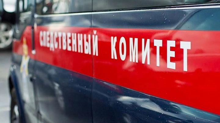 Пропавшая в Тверской области девочка найдена