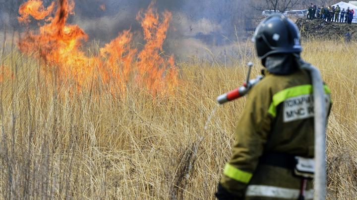 Особый противопожарный режим начал действовать по всей Иркутской области