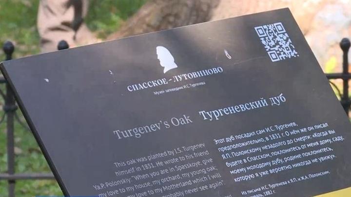 """Тургеневский дуб лидирует в голосовании конкурса """"Российское дерево года"""""""
