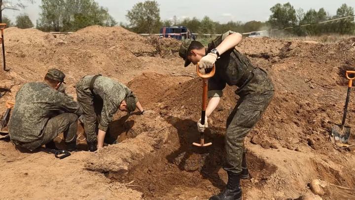 В Новгородской области обнаружили массовое захоронение жертв фашизма