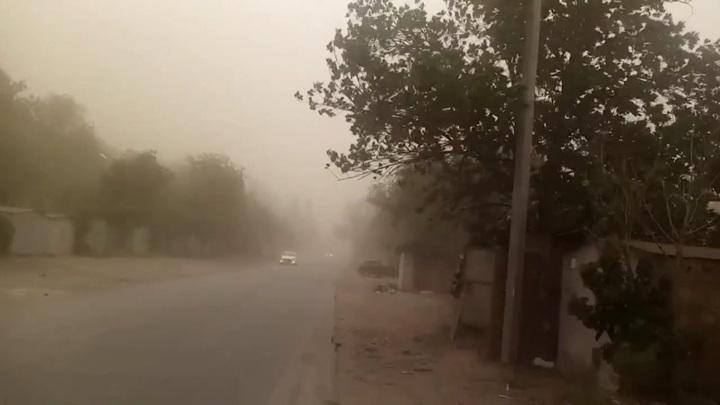 Закрывала солнце: песчаную бурю было видно с самолета