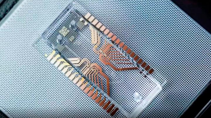 Микрофлюидный биочип позволит диагностировать заболевания на дому