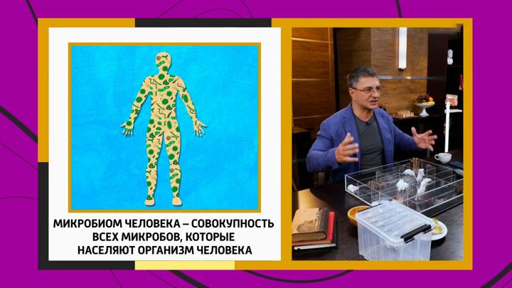"""Кадр из программы """"Доктор Мясников"""". Мясников озвучил простые истины о микробиоме"""