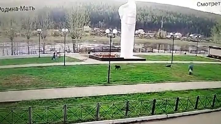 """АНО """"Центр Гражданского Содействия"""""""