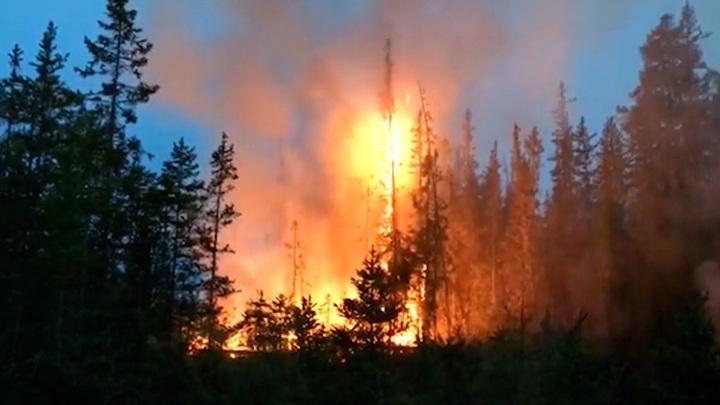 В Иркутской области горит более 35 тысяч га леса