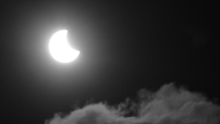 14 раз в 100 лет: новосибирцы увидели кольцеобразное солнечное затмение