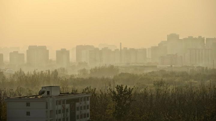 Режим черного неба объявили в Новосибирске
